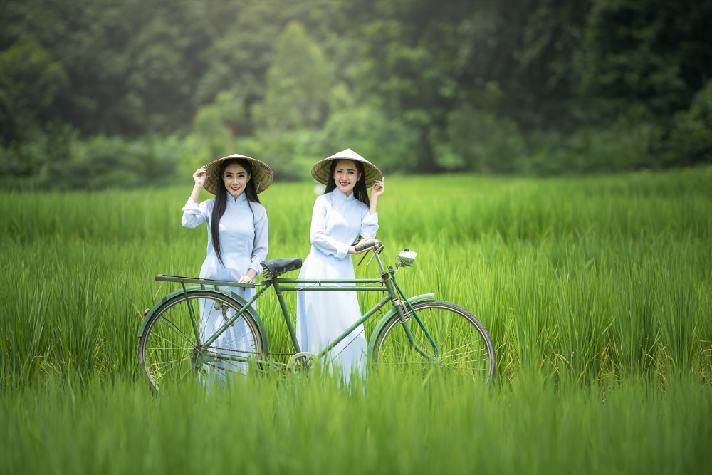 bicycle-1822418