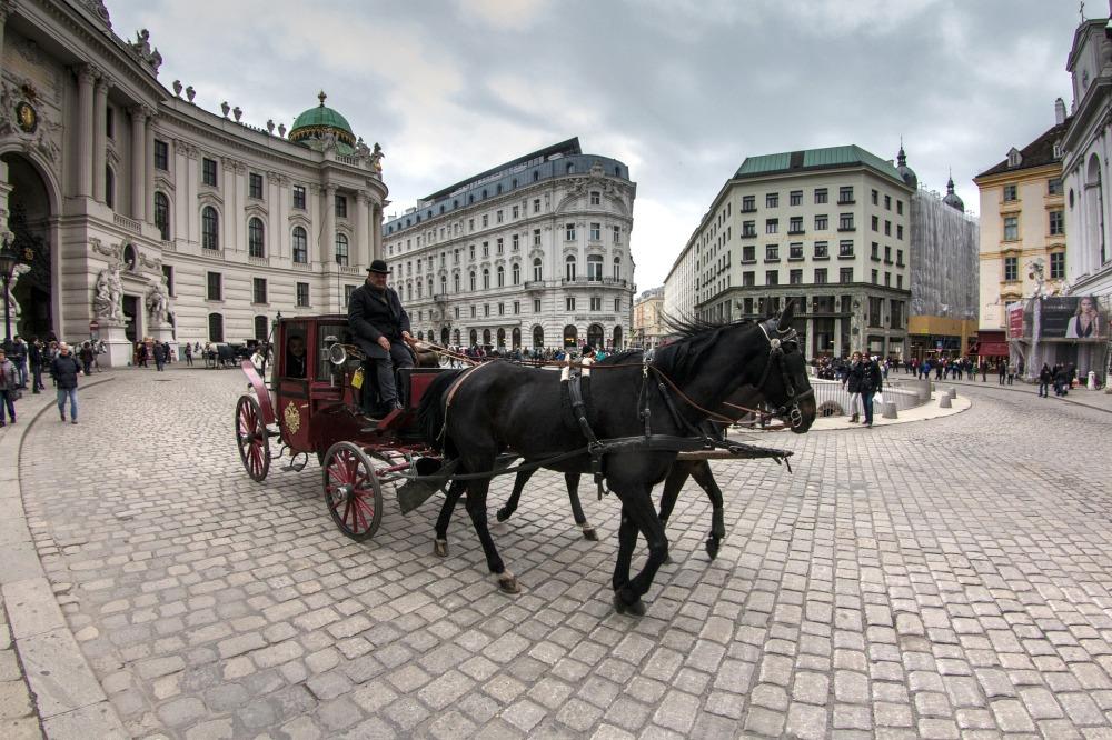 vienna-1472032_1920