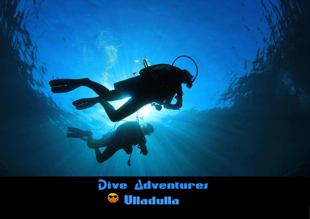 Dive Adventures Ulladulla